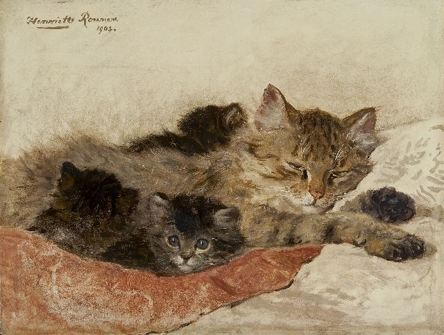 Henriette Ronner-Knip | Dozing cat with her kittens, oil on panel, 27.9 x 36.5 cm, signed u.l. and dated 1903