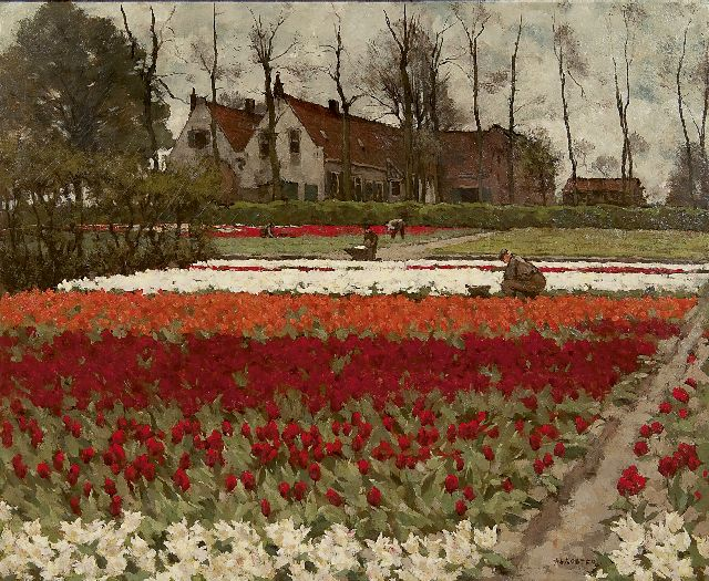 Anton L. Koster | Hyacinths and tulipfields, Overveen, oil on canvas, 60.0 x 73.2 cm, signed l.r.