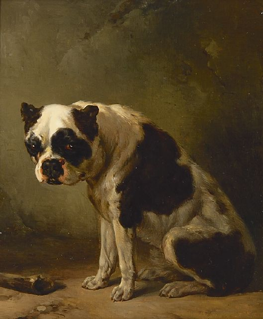 Wouterus Verschuur | A seated bulldog, oil on panel, 10.2 x 19.6 cm