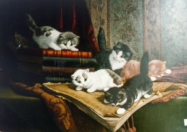Cornelis Raaphorst | Six kittens playing, oil on canvas, 50.0 x 70.0 cm, signed l.r.