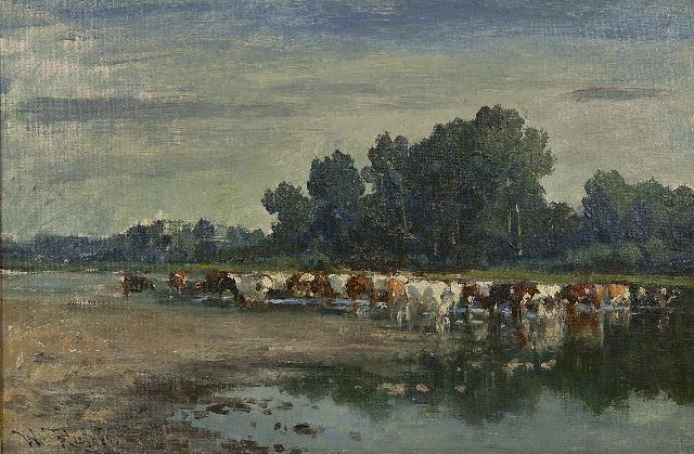 Roelofs W.  | Cows wading, oil on canvas, 30.0 x 44.8 cm, signed l.l.