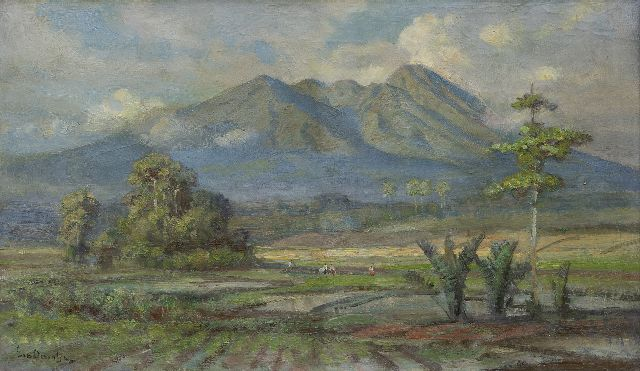 Ernest Dezentjé | A view on the Goenoeng Salak, Java, oil on canvas, 29.3 x 49.5 cm, signed l.l. and dated on the stretcher 4/6/'51