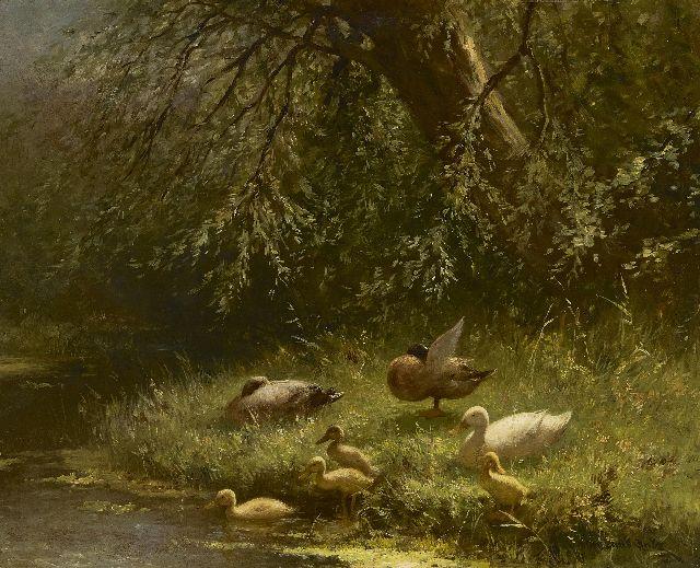 Artz C.D.L.  | Ducks near the waterfront, oil on panel 40.1 x 50.2 cm, signed l.r.
