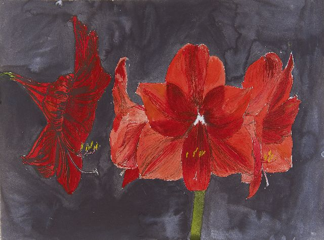 Andriesse E.B.  | Amaryllis, mixed media on paper 49.7 x 66.5 cm, painted ca. 1990