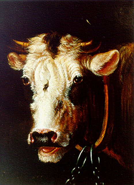 Albertus Verhoesen | A bull's head, oil on panel, 16.7 x 14.0 cm, signed l.l.