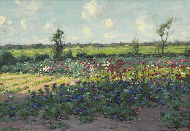 Paul Bodifée | Field of flowers, oil on paper laid down on board, 35.3 x 50.4 cm, signed l.r.