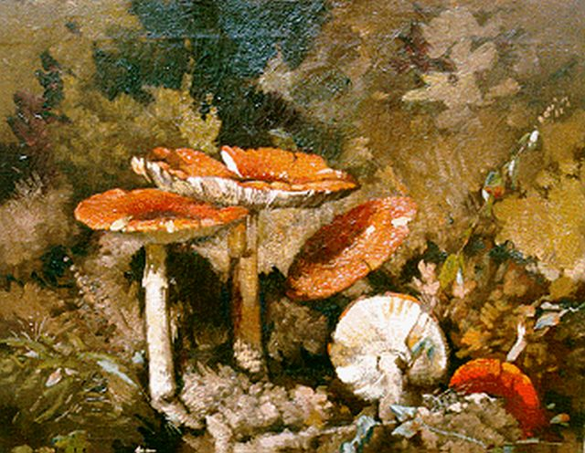 Theo Goedvriend | Fly agarics, oil on canvas, 46.7 x 56.0 cm, signed l.l.