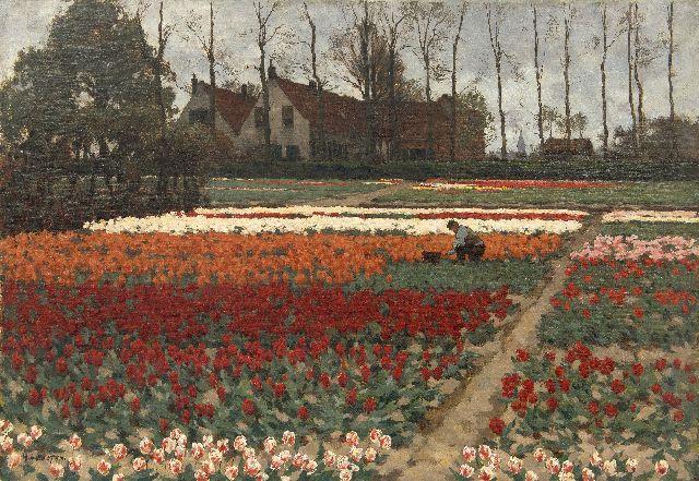 Koster A.L.  | Working in the tulip fields, Overveen, oil on canvas 52.4 x 75.6 cm, signed l.l.