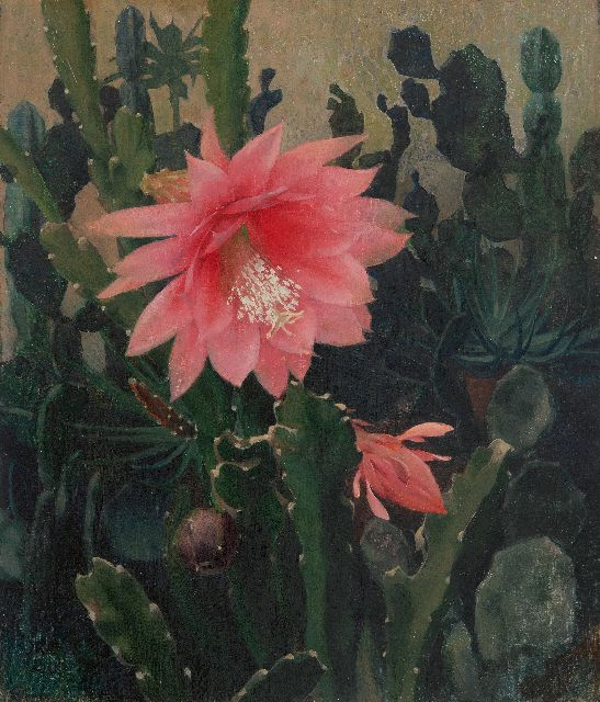 Voerman jr. J.  | Cactus in bloom, oil on canvas laid down on panel 40.9 x 35.0 cm, signed l.l. with initials and dated '20