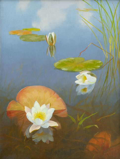 Dirk Smorenberg | Water lilies in the Loosdrechtse Plassen, oil on canvas, 54.2 x 41.3 cm, signed l.r.