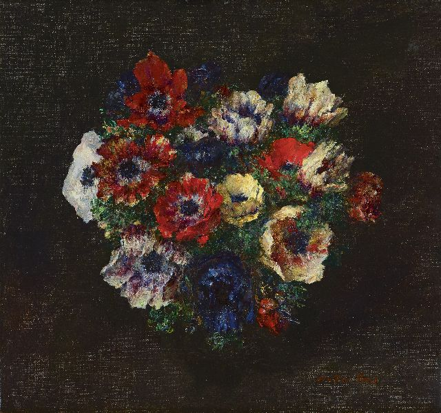Vaes W.  | Anemones, oil on canvas 35.2 x 37.8 cm, signed l.r.