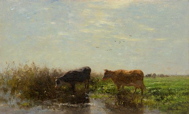 Willem Maris | Two cows in a Dutch landscape, oil on canvas, 53.6 x 78.5 cm, signed l.r.