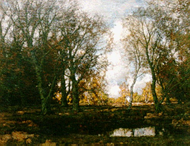 Arnold Marc Gorter | Birches along the Vordense beek in autumn, oil on canvas, 75.5 x 95.5 cm, signed l.r.