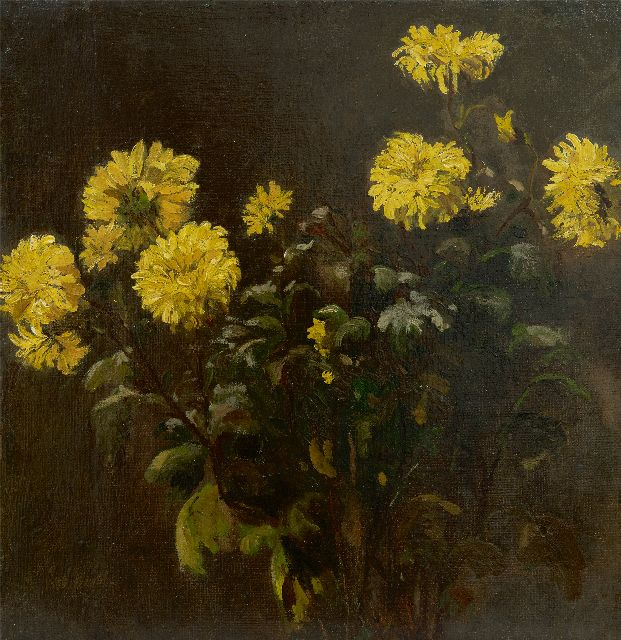 Chris van der Windt | Chrysanthemums, oil on canvas, 43.4 x 42.0 cm, signed l.l.