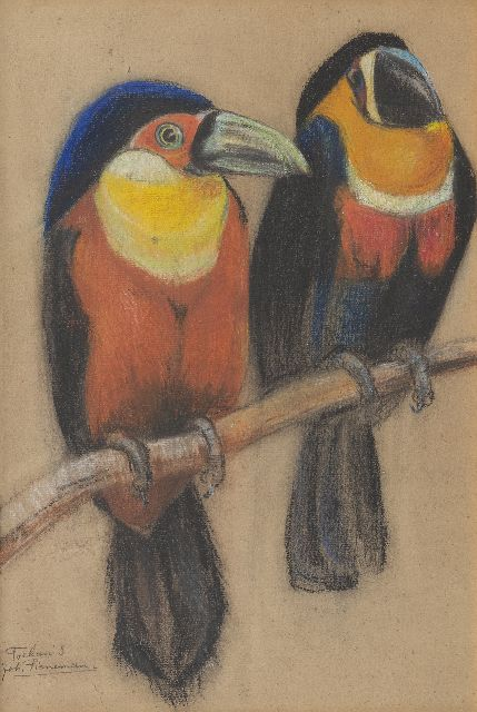 Johanna Pieneman | Two toucans, pastel on paper, 36.7 x 25.0 cm, signed l.l.