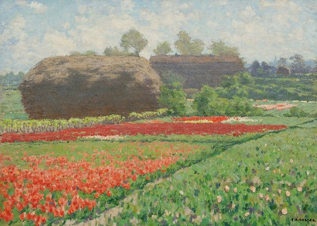 Anton Koster | Late tulips and a reed stack near Bennebroek, oil on canvas, 50.6 x 70.5 cm, signed l.r.