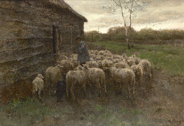 Anton Mauve | Sheep feeding, oil on canvas, 55.5 x 80.7 cm, signed l.r.
