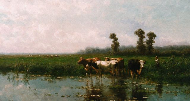 Jan Vrolijk | Cows watering, oil on panel, 51.0 x 90.0 cm, signed l.l. and dated '87