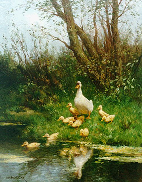Artz C.D.L.  | Ducks with ducklings watering, oil on canvas 50.0 x 40.0 cm, signed l.l.