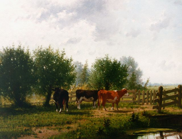 Cornelis Westerbeek | Cows by a fence, oil on panel, 66.4 x 88.2 cm, signed l.l. and dated '84