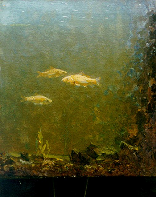 Gerrit Willem Dijsselhof | Goldfish in an aquarium, oil on canvas, 37.3 x 33.1 cm, signed l.r. with monogram