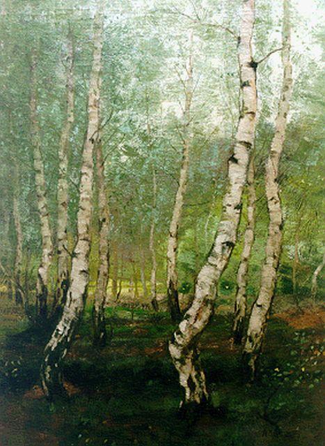 Arnold Marc Gorter | Birches, oil on canvas, 70.4 x 54.0 cm, signed l.r.