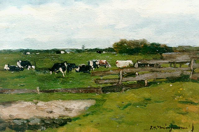 Jan Hendrik Weissenbruch | A summer landscape with cows grazing, oil on canvas laid down on painter's board, 17.5 x 24.5 cm, signed l.r.