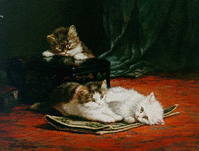 Cornelis Raaphorst | Kittens playing, oil on canvas, 40.6 x 50.2 cm, signed l.l.