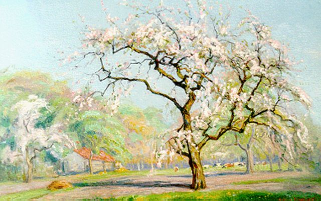 Johan Meijer | An orchard in blossom, oil on canvas, 40.4 x 59.7 cm, signed l.r.