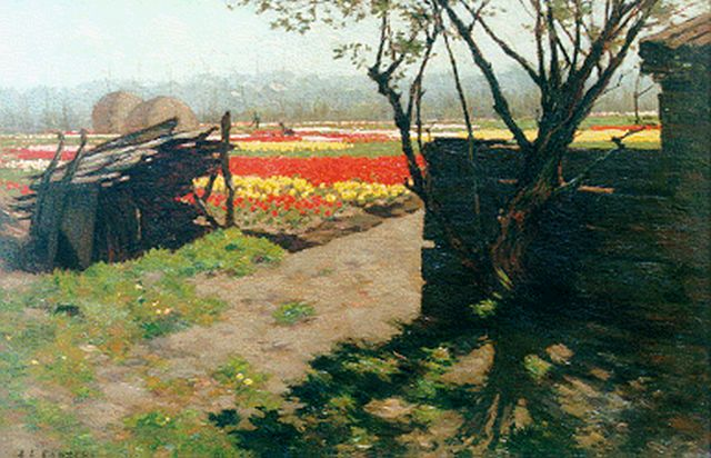 Anton L. Koster | Bulb fields, oil on canvas, 30.4 x 44.9 cm, signed l.l.