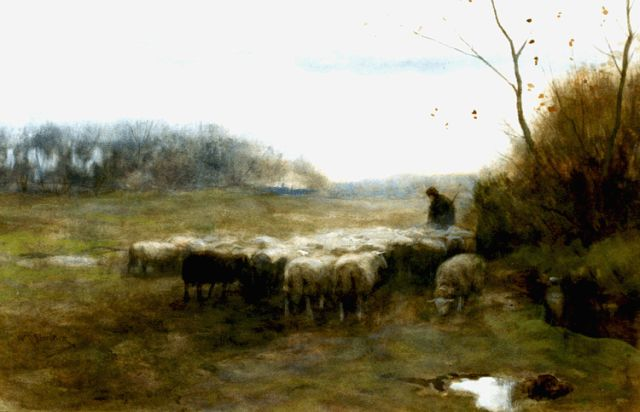 Willem Steelink jr. | A shepherd and flock, watercolour on paper, 28.7 x 44.3 cm, signed l.l. and on the reverse