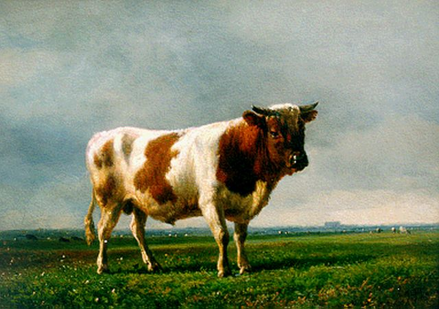 Jan Bedijs Tom | A red-and-white bull, oil on panel, 22.0 x 30.3 cm, signed l.r. and on the reverse