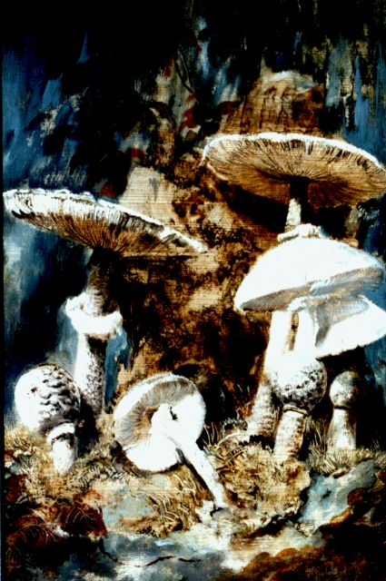 Theo Goedvriend | Mushrooms, oil on panel, 41.9 x 28.5 cm, signed l.r.