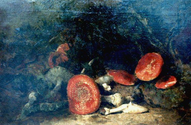 Theo Goedvriend | Red mushrooms, oil on canvas, 85.6 x 55.6 cm, signed l.l.