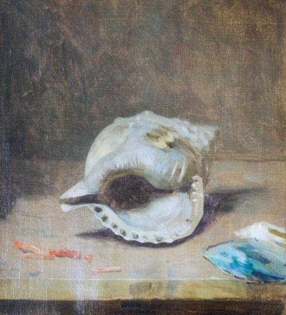 Gerrit Willem Dijsselhof | A shell, oil on canvas, 31.7 x 28.5 cm, signed l.r.