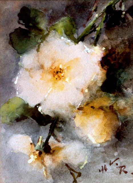 Margaretha Roosenboom | Yellow roses, watercolour on paper, 24.5 x 18.0 cm, signed l.r. with initials