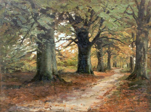 Frits Mondriaan | A forest lane, oil on canvas laid down on painter's board, 48.0 x 64.0 cm, signed l.l.
