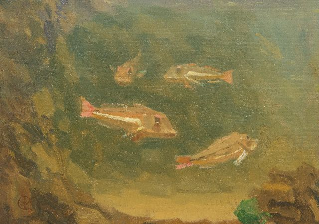Gerrit Willem Dijsselhof | Red gurnards in an aquarium, oil on canvas laid down on panel, 18.5 x 24.5 cm, signed l.l. with monogram