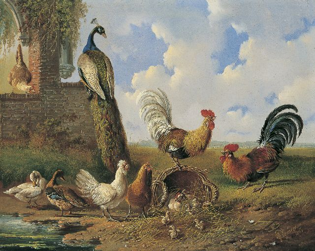 Albertus Verhoesen | Poultry and a peacock near a ruin, oil on panel, 30.4 x 38.3 cm, signed l.r. and dated 1861
