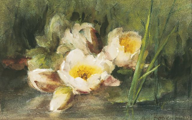 Margaretha Roosenboom | Water lilies, watercolour on paper, 33.0 x 51.7 cm, signed l.r.