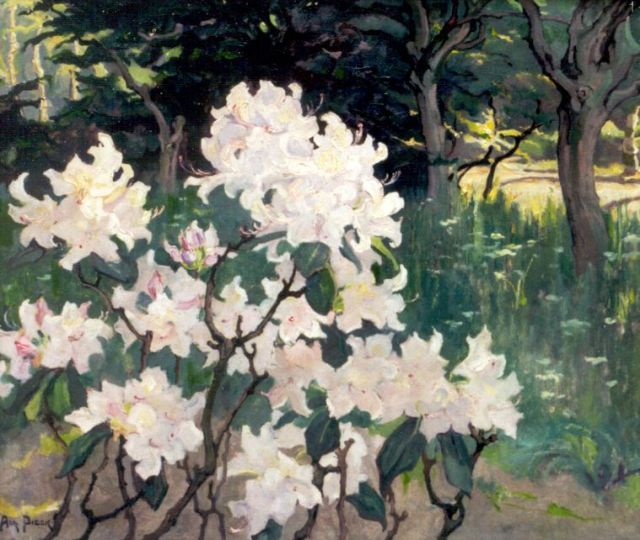 Adri Pieck | Rododendrons, oil on canvas, 55.9 x 65.5 cm, signed l.l.