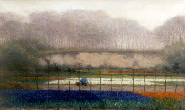 Wilhelm Christiaan Constant Bleckmann | Bulb fields, oil on canvas, 53.5 x 83.5 cm, signed l.r.
