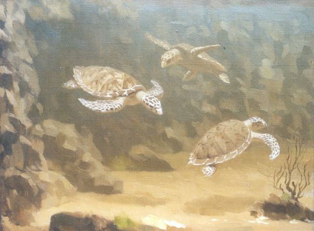 Gerrit Willem Dijsselhof | Turtles, oil on canvas, 20.7 x 26.7 cm