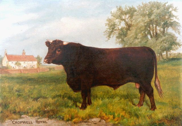 Charles Edwin M. Baldock | Cropwell Royal, portrait of a bull, oil on canvas, 29.8 x 42.0 cm, signed c.l. and dated 1902