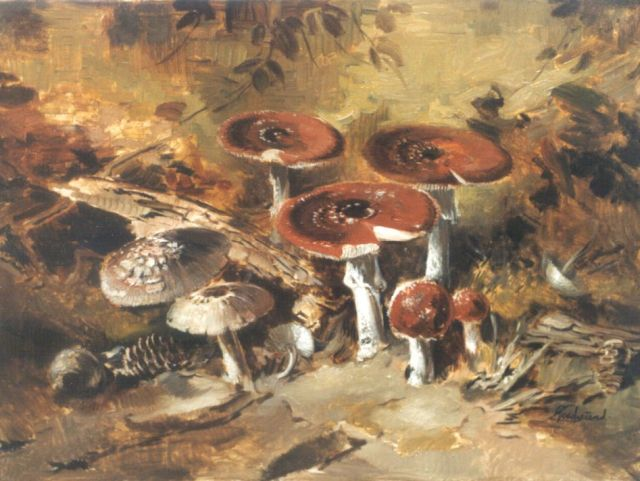 Theo Goedvriend | Mushrooms, oil on canvas, 60.2 x 80.0 cm, signed l.r.