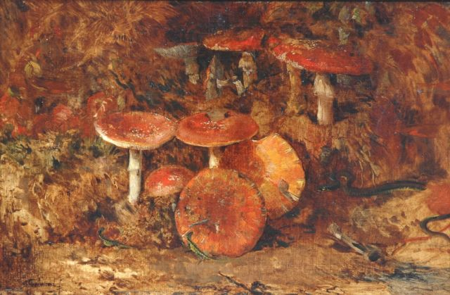Theo Goedvriend | Fly agarics in the woods, oil on canvas, 56.4 x 85.8 cm, signed l.l.