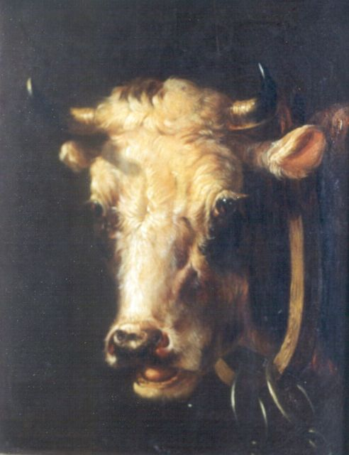 Albertus Verhoesen | A bull's head, oil on panel, 17.1 x 13.7 cm, signed l.l.
