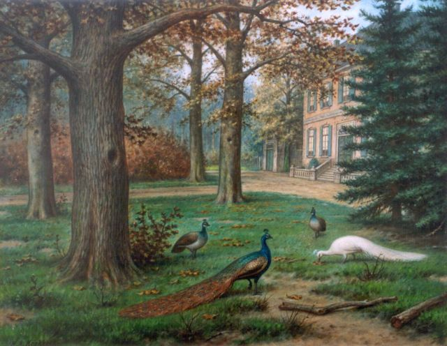 Marinus Adrianus Koekkoek II | Peacocks in a landscape garden, oil on canvas, 40.2 x 50.5 cm, signed l.l.