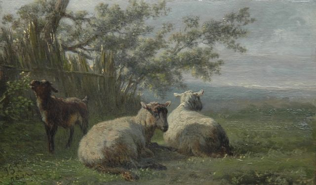 Jan Bedijs Tom | Sheep and a goat in a meadow, oil on panel, 10.4 x 17.4 cm, signed l.l. and painted '75