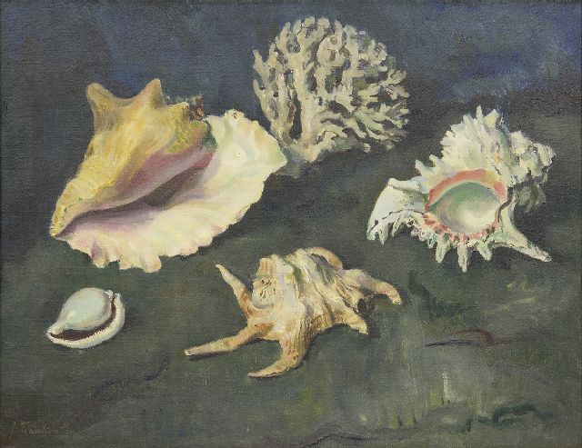 Jan Franken | Shells and coral, oil on canvas, 50.2 x 65.2 cm, signed l.l.